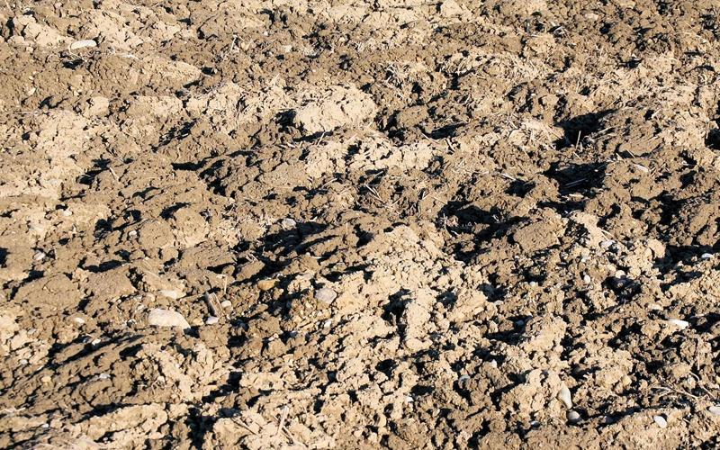 entsorgung von mutterboden